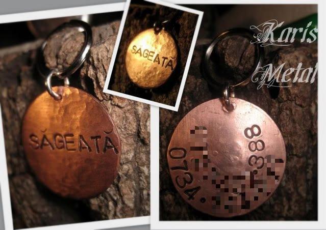 MedalionSageata.jpg