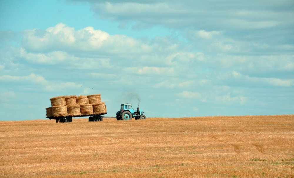 Hungary has one of Europe's fastest growing agriculture sectors ...
