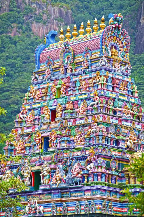 The 7 Most Beautiful Temples in India   India travel places, Temple india,  India architecture