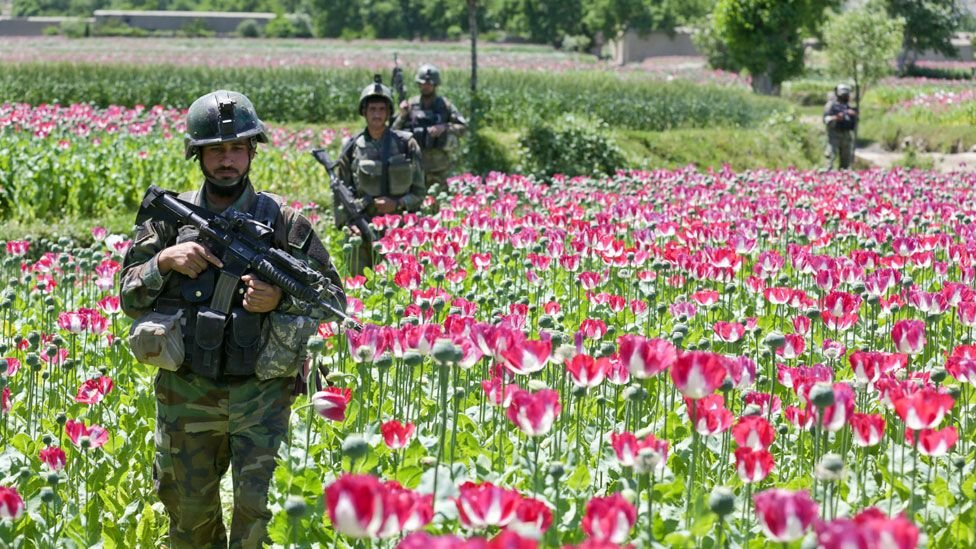 How the US military's opium war in Afghanistan was lost - BBC News