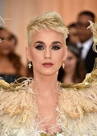 Image result for Katy Perry Photography