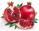Pomegranates – A Gorgeous, Delicious and Nutritious Fruit! | VitaMedica